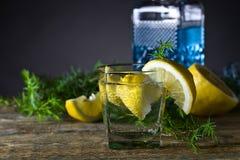 Genièvre avec des tranches de citron images libres de droits