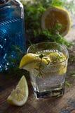 Genièvre avec des tranches de citron image stock