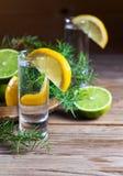 Genièvre avec le citron photo stock