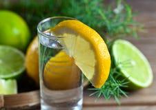 Genièvre avec le citron image libre de droits