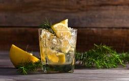 Genièvre avec le citron et la brindille de genévrier images stock