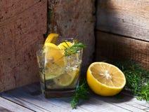 Genièvre avec le citron et la brindille de genévrier photos stock