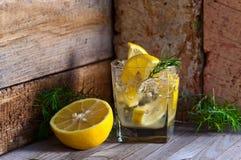 Genièvre avec le citron et la glace photo stock