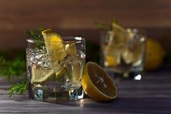 Genièvre avec le citron et la glace photographie stock libre de droits