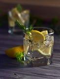 Genièvre avec le citron et la glace photos stock