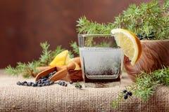 Genièvre de cocktail, tonique avec le citron et une branche de genévrier avec des baies images stock