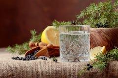 Genièvre de cocktail, tonique avec le citron et une branche de genévrier avec des baies photo stock