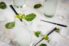 Genièvre de concombre et cocktail de tonique image libre de droits