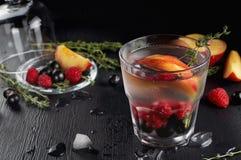 Genièvre de thym de framboise et cocktail de tonique avec le cassis et les pêches image libre de droits