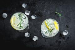 Genièvre et cocktail de tonique photo libre de droits