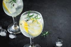 Genièvre et cocktail de tonique image libre de droits