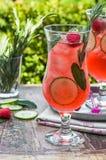 Genièvre et cocktail roses de tonique images stock