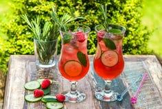 Genièvre et cocktail roses de tonique images libres de droits