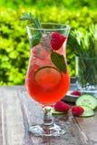 Genièvre et cocktail roses de tonique photo libre de droits