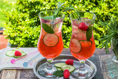 Genièvre et cocktail roses de tonique photos stock