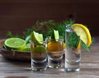 Genièvre et tequila avec des agrumes images stock