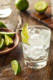 Genièvre et tonique alcooliques image libre de droits