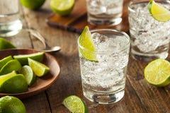 Genièvre et tonique alcooliques photos stock