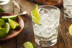 Genièvre et tonique alcooliques image stock
