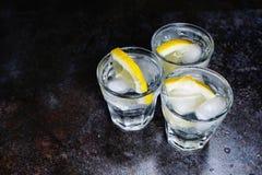 Genièvre et tonique avec le citron et la glace sur la table en bois photographie stock libre de droits