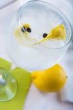 Genièvre et tonique sur un verre de highball image stock