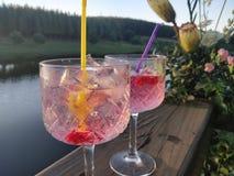 Genièvre rose et boissons les épousant toniques image stock