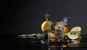 Genièvre-tonique avec des tranches de citron et des brindilles de romarin photos stock