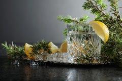 Genièvre, tonique avec des tranches de citron et un brin de genévrier photographie stock