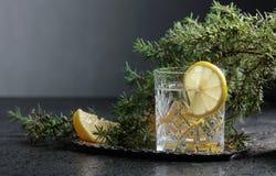 Genièvre, tonique avec des tranches de citron et un brin de genévrier photographie stock libre de droits