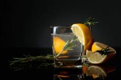 Genièvre-tonique de cocktail avec des tranches de citron et des brindilles de romarin image libre de droits