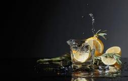 Geni?vre-tonique de cocktail avec des tranches de citron et des brindilles de romarin images stock