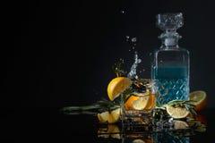 Geni?vre-tonique de cocktail avec des tranches de citron et des brindilles de romarin photos libres de droits
