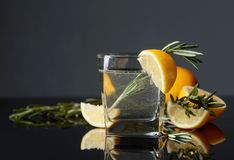 Geni?vre-tonique de cocktail avec des tranches de citron et des brindilles de romarin photo libre de droits