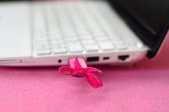 Genialna różowa USB błysku przejażdżka z różowym łękiem łączy biały laptop który kłama na koc miękki i puszysty światło, obrazy stock