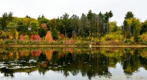 Genialni kolory spadek na jeziorze Obraz Stock