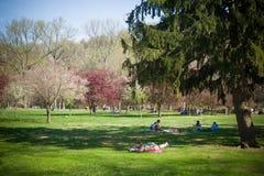 Genießen des Frühlinges am Park lizenzfreies stockfoto