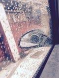 Genießen des Regens Stockbilder