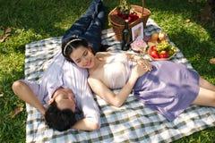 Genießen des romantischen Picknicks Stockbilder