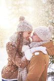 Genießen des Winters stockbild