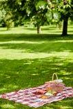 Genießen eines gesunden Frühlingspicknicks im Freien lizenzfreie stockfotografie