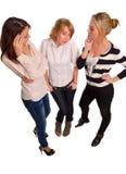 Genießen mit drei weibliches Freunden Stockfotografie