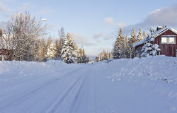 Genießen Sie das Leben an einem Wintertag Lizenzfreies Stockbild