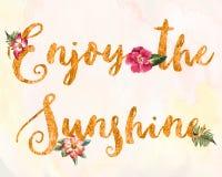 Genießen Sie den Sonnenschein Lizenzfreies Stockfoto