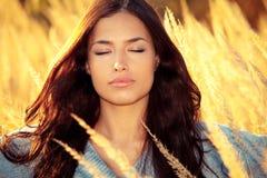 Genießen Sie in der Herbstsonne Stockfotografie