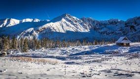 Genießen Sie Ihre Winterzeit in den kalten Bergen, Tatras Stockbild