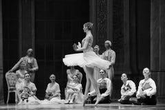 Genießen Sie ruhig den Tanz des Publikum-D Ballett-Nussknackers stockbild