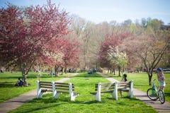 Genießen von Frühlings-Tätigkeiten am Park lizenzfreie stockfotografie