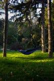 Genießen von letzten Tagen des Sommers in einem ruhigen Park stockbild