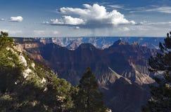 Genießen der Ansicht an Grand Canyon -Nordkante, Arizona, USA lizenzfreie stockbilder