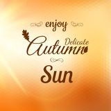 Geniet van Autumn Background Eps 10 Royalty-vrije Stock Afbeelding